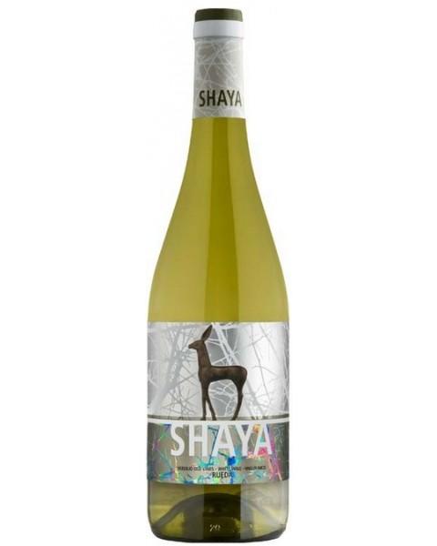 Shaya 2013