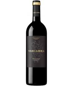 Vizcarra 15 Meses