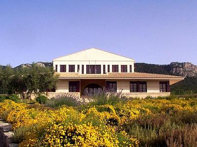 Comprar vino Bodegas Casa de la Ermita