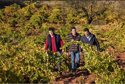 Winery Alto Moncayo