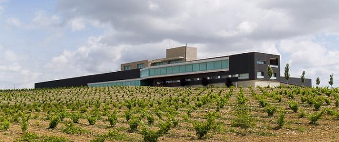 Winery Habla