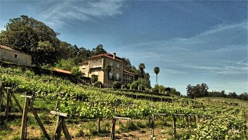 Winery Dominio de Tares