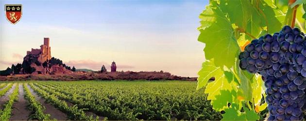 Vinos Almansa