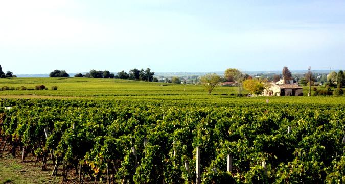 Comprar vinos de Francia